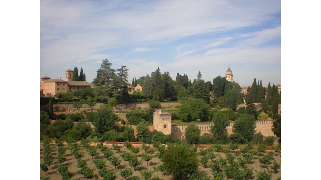 Abenteuer Spanien: Duale Studenten bei Garcia Carrion, Teil 5