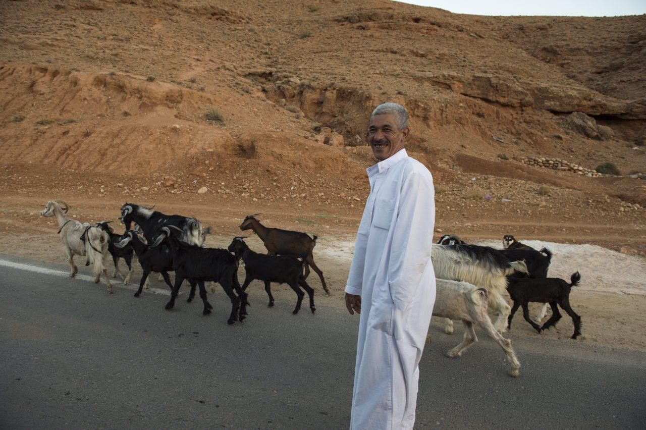 Algerien – ein Reisebericht Teil II
